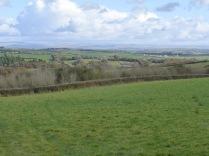 Dartmoor in the distance
